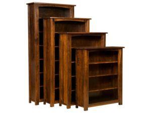 Mondovi Bookcase
